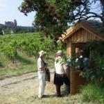 Geschichtliche Überraschung in der Weingartenhütte